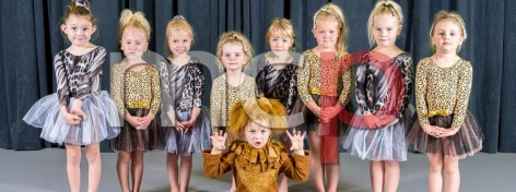 WCSD Pre School Show Groups 2017